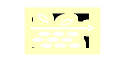 Löst Hautschuppen